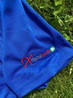 Blue Adults Polo Shirt