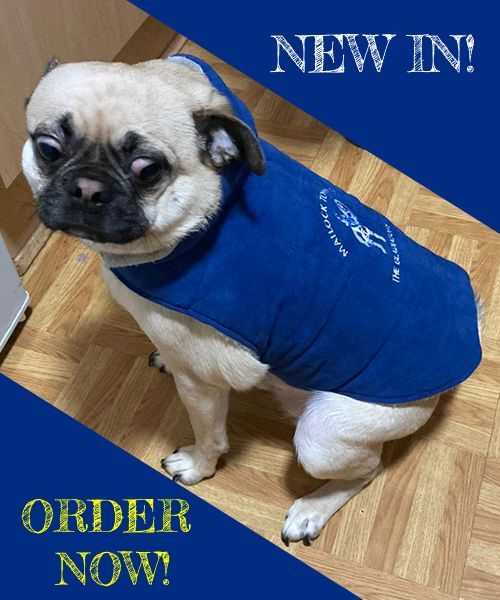 Browse Matlock Town FC Dog Jackets